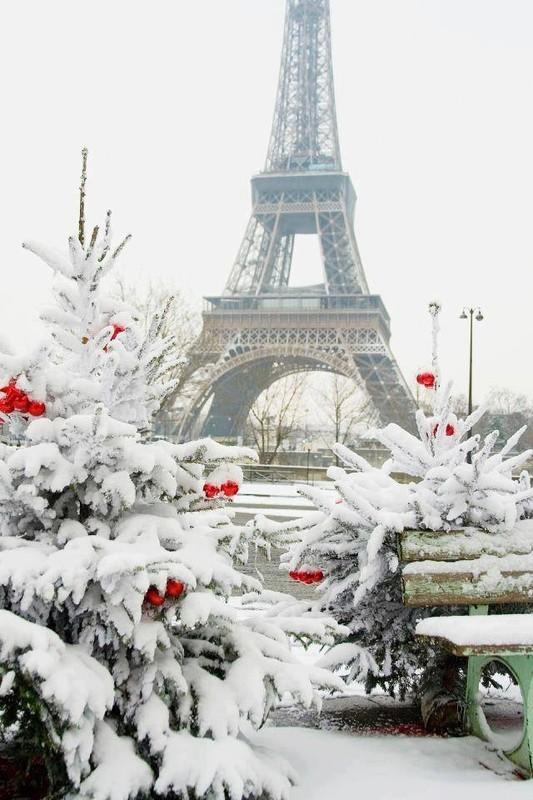 Un Noël Blanc à Paris    ...    c'est juste un rêve  !