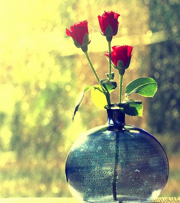 De jolies fleurs    ...    pour votre maison virtuelle  !