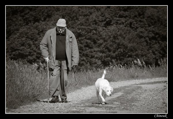 """Résultat de recherche d'images pour """"image d'un homme et de son chien"""""""