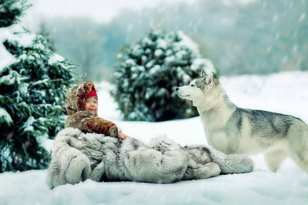 Хаски картинки зимой