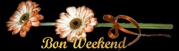 Bon week end mes Ami(e)s  ...  Profitez-en bien !