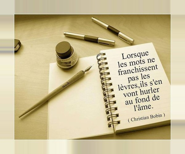 Citations  en images   ...    sans commentaires  !