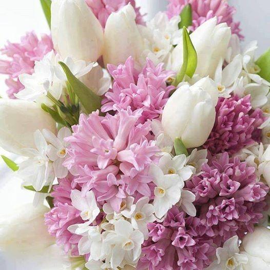 Quelques fleurs  ...  pour vous qui passez sur mon blog !