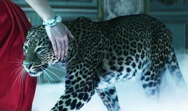 """"""" Si tu étais un Animal , Lequel serais-tu """" ? Bf29827a"""