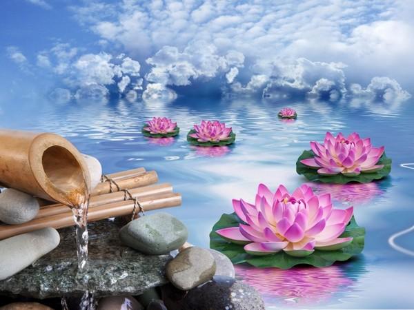 un joli fond dcran zen si vous aimez kdo