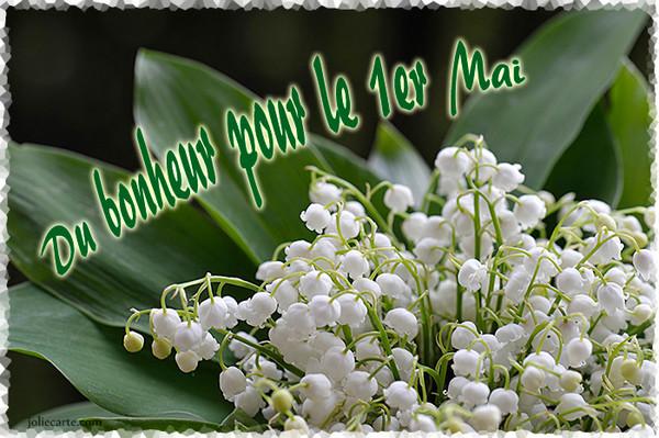 Muguet et porte bonheur - Photo muguet 1 mai ...