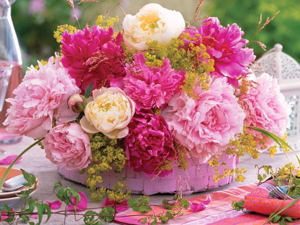 Quelques fleurs   ...   pour égayer votre maison virtuelle !