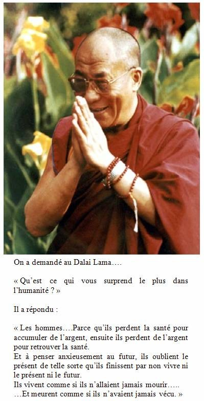 Citation du Dalaï Lama   ...