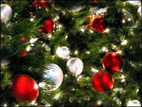 Féérie de Noël   ...